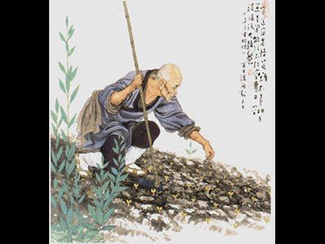 bai-zhang01