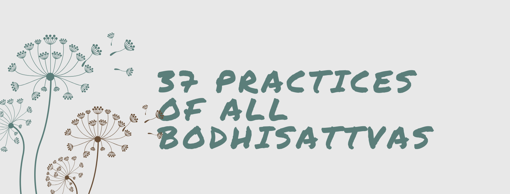 37 practices of all bodhisattvas